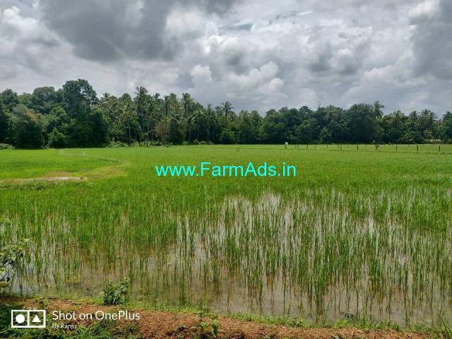 6.57 acre agriculture plain land for sale ar Sural, Karkala