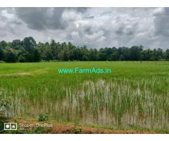 6.57 acre agriculture plain land for sale ar Sural, Karkala