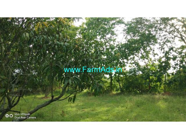 21.5 acre farm land available for sale at Mandya