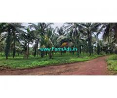 20 Acre Agriculture farm land for sale at uppinangadi -Nelliadi  route