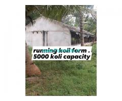 9 acre farm land for sale at  mysore to gundlupete road
