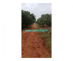3 Acres Mango and Coconut Farm Land for sale at Ramangara.