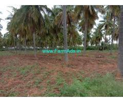 6 Acres Coconut farm Grove for sale at chitradurga.