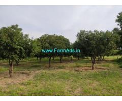 12.5 Acres Organic Fruit Farm Land for Sale at Mandemvaripalli