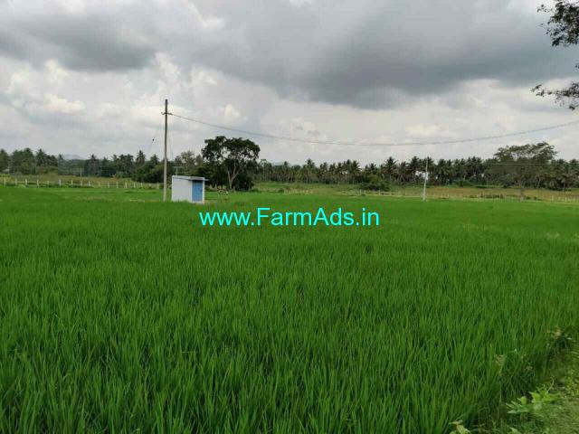 11 Acres Coconut Farm for sale at Nidigul, Kanakapura
