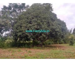 12 Acre Very Beautiful Land for Sale in Bogadi-Gaddige Route