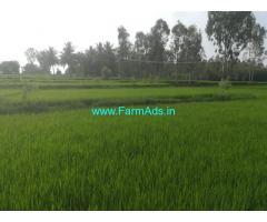 6.21 Acres Agriculture land for sale at Shambanahalli near Bilikere