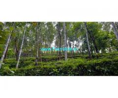 1.77 Acres Farm Land with House for Sale at Idukki