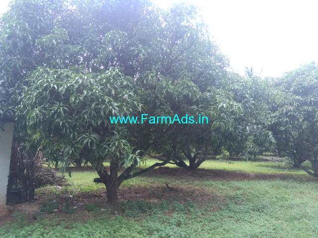 12 Acres Mango farm for sale at kollamkode area