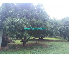 12 Acres Mango farm for sale at kollamkode area