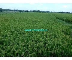 14 acres Agriculture land for sale at Husnabad.