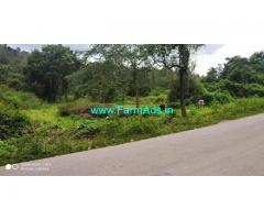 12 Gunta land for sale in Chikkamagalur