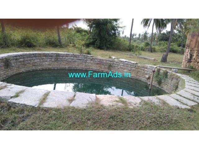 12.5 Acre Coconut Farm Land for Sale Near Kadur