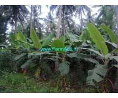 3.25 acre coconuts farm and banana farm for sale at  kumiitipathy