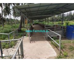 8.5 acre farm land for sale at eruthenpathi village chittur, Palakkad