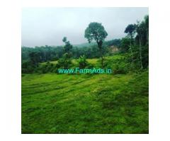 10 Acre agriculture land for sale in Sakleshpur