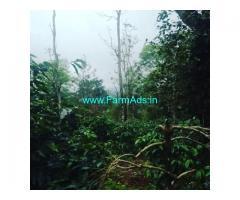 6 Acre Coffee estate for sale in Sakleshpur