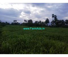 2 acre agiculture plain farm land for sale in kumittipathi, coimbatore.