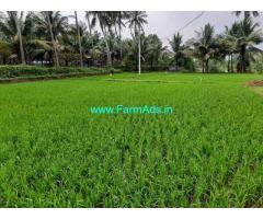 4.60 acre agriculture farm land sale at chandrapuram near. Walayar.