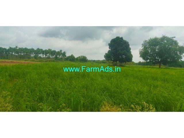 2 acre 15 kuntas farm land for sale at Yediyur, Kunigal Taluk.