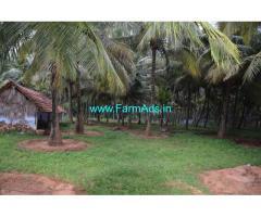 3.65 acres coconut farm for sale at pollachi