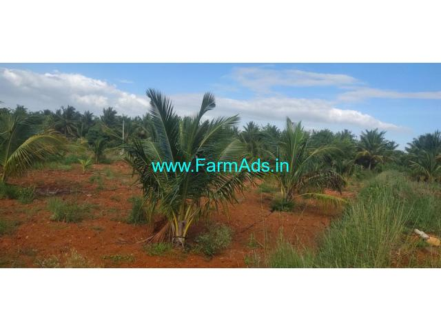 6 and half acre coconut farm land for sale near Kunigal.