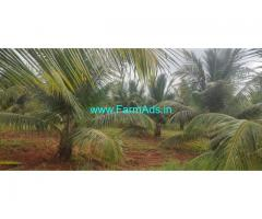 4 acre 4 kuntas coconut farm land for sale near Kunigal, Empire hotel