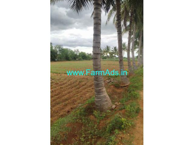 5.5 acres total farm land for sale at Dindigul.