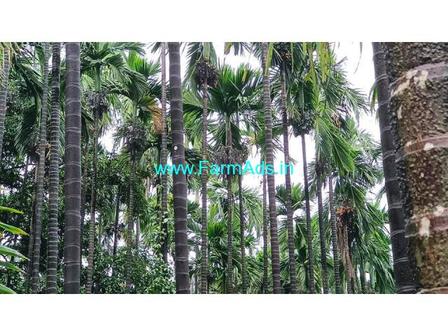 3.5 acre record total  6 Acre boundary farm for sale at Mangalore