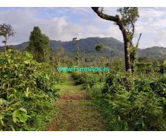 8 Acre Coffee plantation land for sale in Mudigere