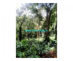 45 Acre coffee Estate For Sale near Mallandur