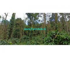 3.10 Acre coffee plantation land for Sale near Hanbal