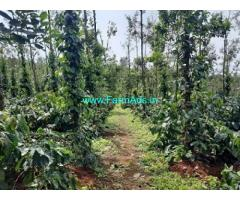 7.5 Acre Coffee plantation with Home stay For Sale near Sakleshpur