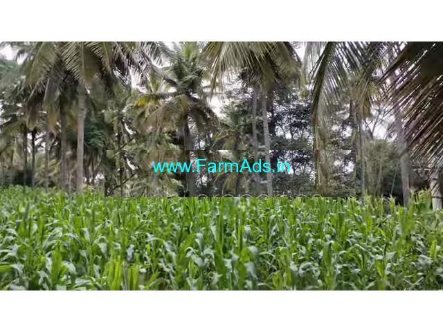 26 gunta coconut farm for sale 60 km from bangalore at channapatna.