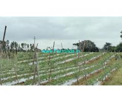4 acre agriculture land for sale at malavalli