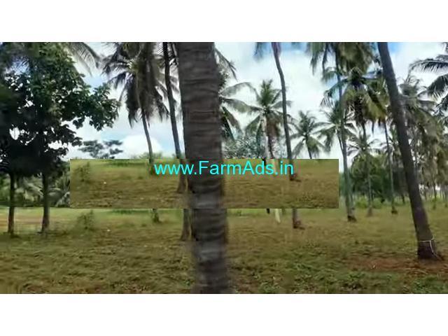 1 acre 20 gunta coconut farm for sale 60km from bangalore at channapatna