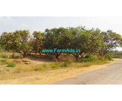 1.08 Acres Mango Farm Land for Sale near Bheemali