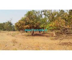 1.08 Acres Mango Farm Land for Sale near Bheemali
