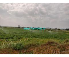 6 Acre Farm Land for Sale Near Wanaparthy