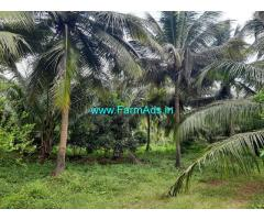 24 acre agriculture farm land for sale at Kozhinjampara - chittur