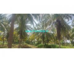 7 acre agriculture coconut farm land for sale near Gubbi