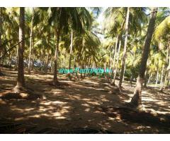 54 acres of Punchai land for sale. Chengalpattu. Madurantakam