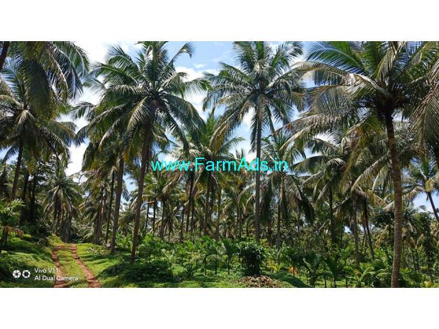 36 acres running estate for sale at Subramanya, Karnataka