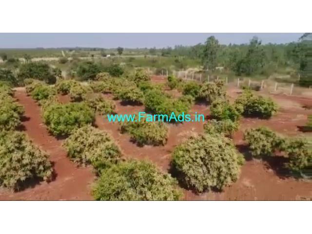 50.15 Acres Mango Farm for sale at kodigenahalli road, Tumkur