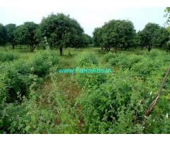 2 acors Mamidi Tota, Mango Farm  available for sale at Husnabad