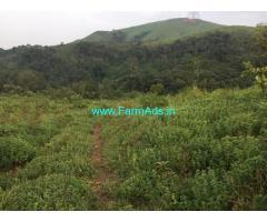 3 acres Farm land for sale in Chikmagalur