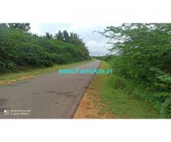 18 Acres Developed Farm land for sale at Kodihalli, near Hiriyur