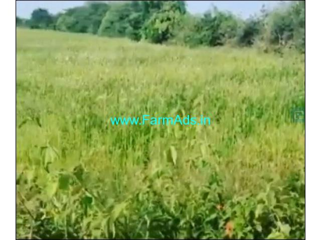 4 acre Agriculture land for sale in Kadur