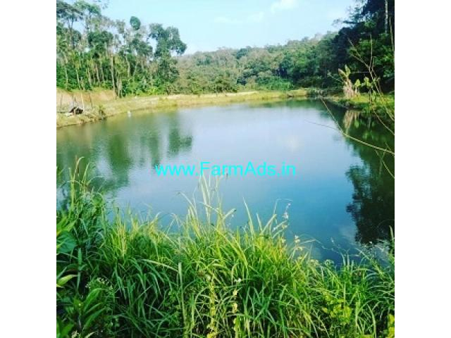 10 Acre well maintained Coffee estate with homestay for sale in Hassan