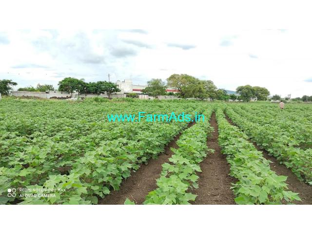 11 Acre Agriculture land for Sale in Sadasivpet